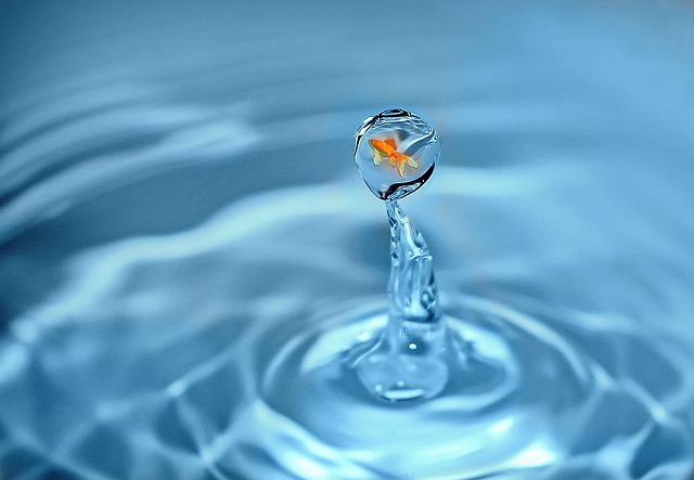 drop-of-water-1302535_640