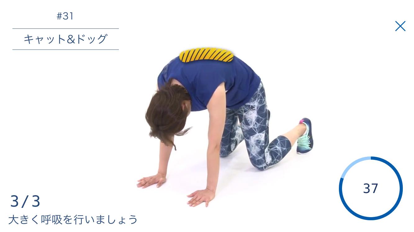 画像④ (3)